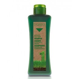 Oily hair shampoo - Lengvos...